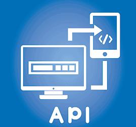 Ecommerce API Programmer