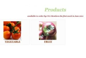 Custom Ecommerce Design for Community Supported Agriculture Screenshot: Products Page
